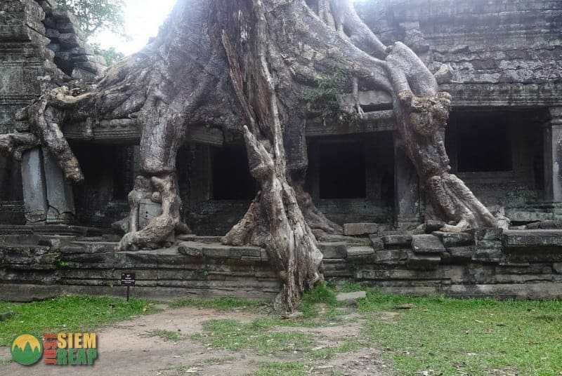 Preah Khan Temple Guide