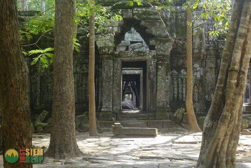 Ta Nei Temple Guide