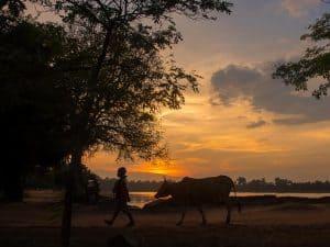 Angkor Wat Grand Circuit Tour with Optional Srah Srang Sunset