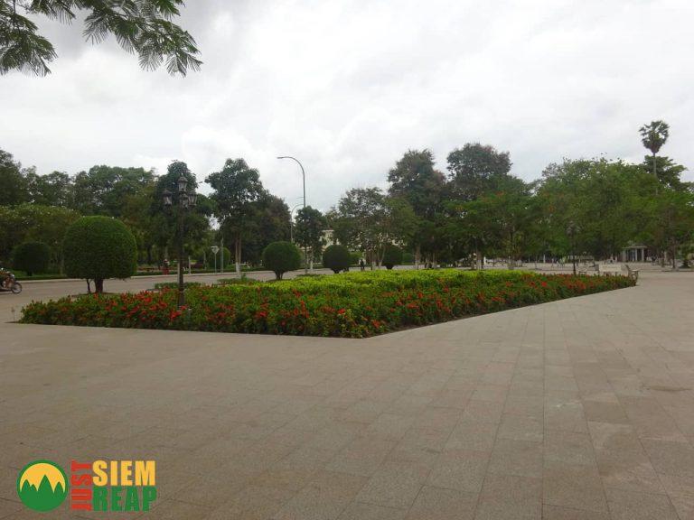 Paved Gardens